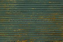 Ribbons papier murales Coordonne structures