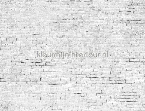 Bricks papier murales 6800618 Moderne - Résumé Coordonne
