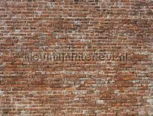 Bricks fototapeten Coordonne weltkarten