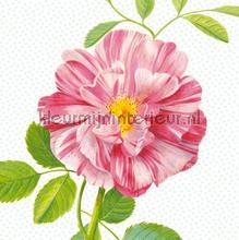 Peony fotobehang roze bloem tapet Eijffinger Rice 359158