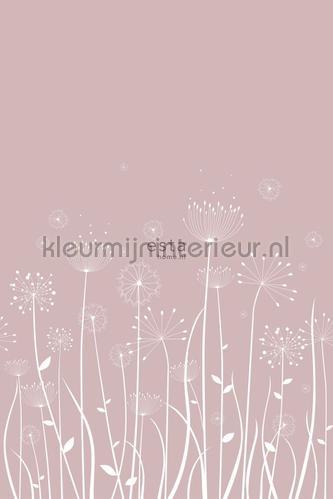Paardebloem silhouetten fototapeten 152-158905 Blumen - Pflanzen Esta home