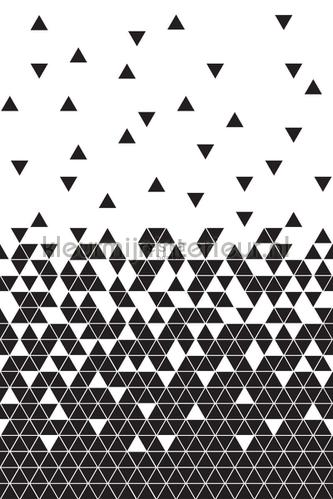 Grafisch driehoeken ritme photomural 152-158906 Graphic - Abstract Esta home