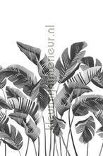 Grote bananenbladeren fototapeten Esta home alle bilder