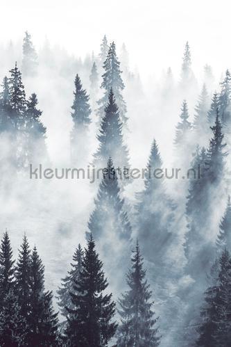 Mistig bos photomural 152-158909 Forests Esta home