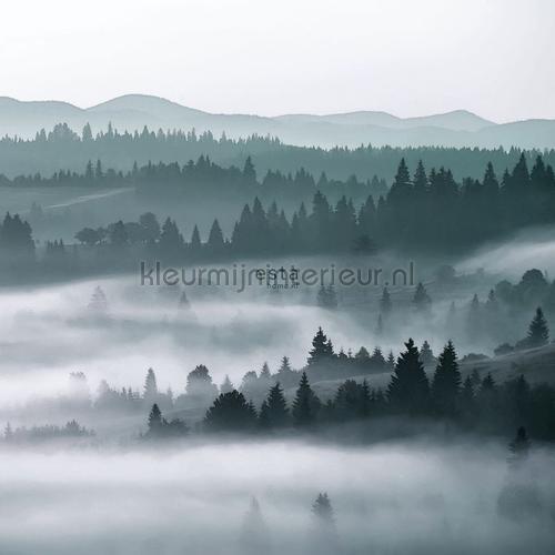 Mistige bergen papier murales 152-158910 Forêts Esta home