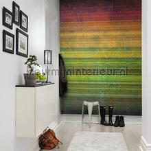 Spectrum Striped Curtain fotobehang Rebel Walls Grafisch Abstract