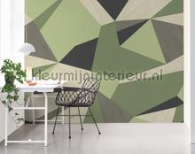 102054 fotobehang BN Wallcoverings York Wallcoverings