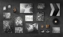 Black out fotobehang Noordwand alle afbeeldingen