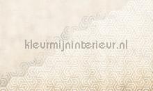 hexagon fotobehang Noordwand Vanilla Lime 014188