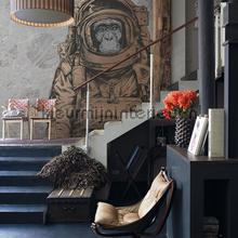 Space monkey photomural Noordwand Mural room set photo's