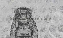 space monkey fotobehang Noordwand Vanilla Lime 014214