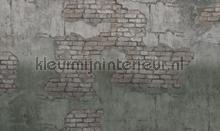 broken fotobehang Noordwand Vanilla Lime 014244