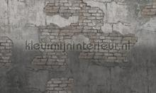 broken fotobehang Noordwand Vanilla Lime 014246