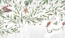 biodiversity fotomurais Noordwand Vanilla Lime 014300