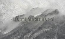 mountains fotomurais Noordwand Vanilla Lime 014316