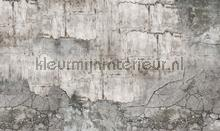 concrete wall fotobehang Noordwand Vanilla Lime 014332