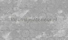 casablanca fotomurais Noordwand Vanilla Lime 014366