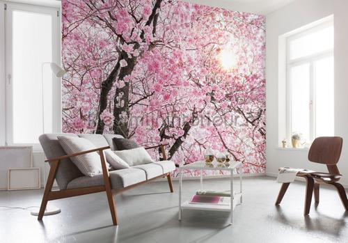 Bloom papier murales XXL4-046 Flees collection Komar