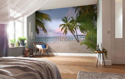 Paradise Morning fotobehang XXL4-528 Vlies collectie Komar
