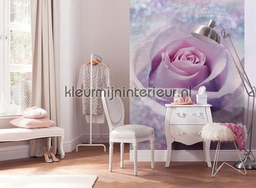 Delicate Rose fototapet XXL2-020 Flees collection Komar