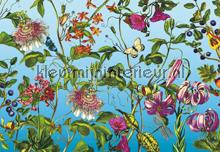 Jardin fotobehang Komar Vlies collectie XXL4-029