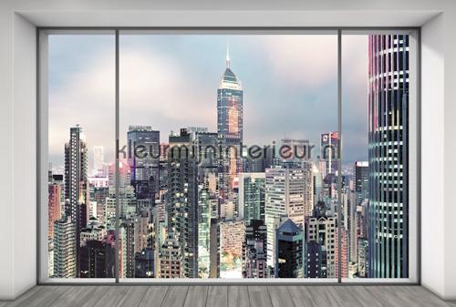 Suite fotomurais XXL4-030 Flees collection Komar
