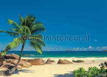 Seychellen fotobehang Komar Zon Zee Strand