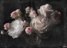 eternity photomural Komar Vol 15 4-876