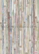 vintage wood photomural Komar Vol 15 4-910