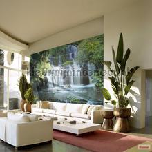 Pura kaunui falls fotobehang Komar waterval