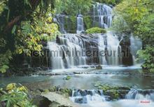 pura kaunui falls photomural Komar Vol 15 8-256