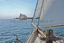 Sailing fotobehang Komar Marine-Onderwaterwereld