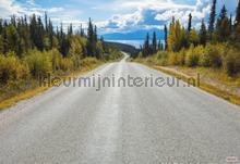 Atlin road fototapeten Komar weltraum