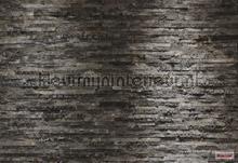 Birkenrinde papier murales Komar structures