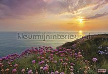 Land s end fotobehang Komar Zon Zee Strand