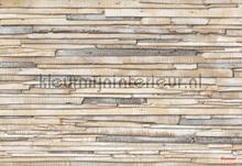 whitewashed wood photomural Komar Vol 15 8-920