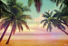 Miami fotobehang Komar Zon Zee Strand