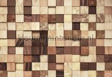 lumbercheck photomural Komar Vol 15 8-978