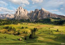 Alpen fototapet Komar verdenskort