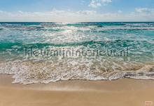 seaside fotomurais Komar Vol 15 8-983