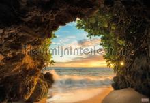 Hide out fotobehang Komar Zon Zee Strand