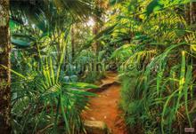 Jungle trail papier murales Komar Forêts