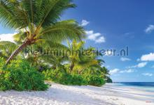 Reunion fotobehang Komar Zon Zee Strand