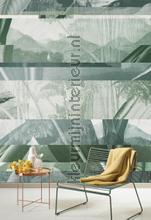 alocasia shade fotomurales dgalo1022 Moderno - Abstracto Khroma