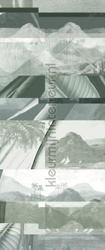 alocasia shade fotomurales dgalo1023 Moderno - Abstracto Khroma