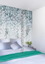 willow shade wallcovering Khroma Wall Design dgwio102