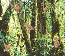 Wallpower Junior Monkeys in the Jungle fotomurali Eijffinger sport