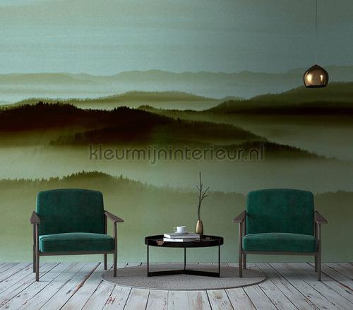 papier murales dd113657 Forêts AS Creation