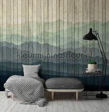 photomural mountains