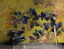 88936 fotomurais AS Creation Walls by Patel 2 dd114092